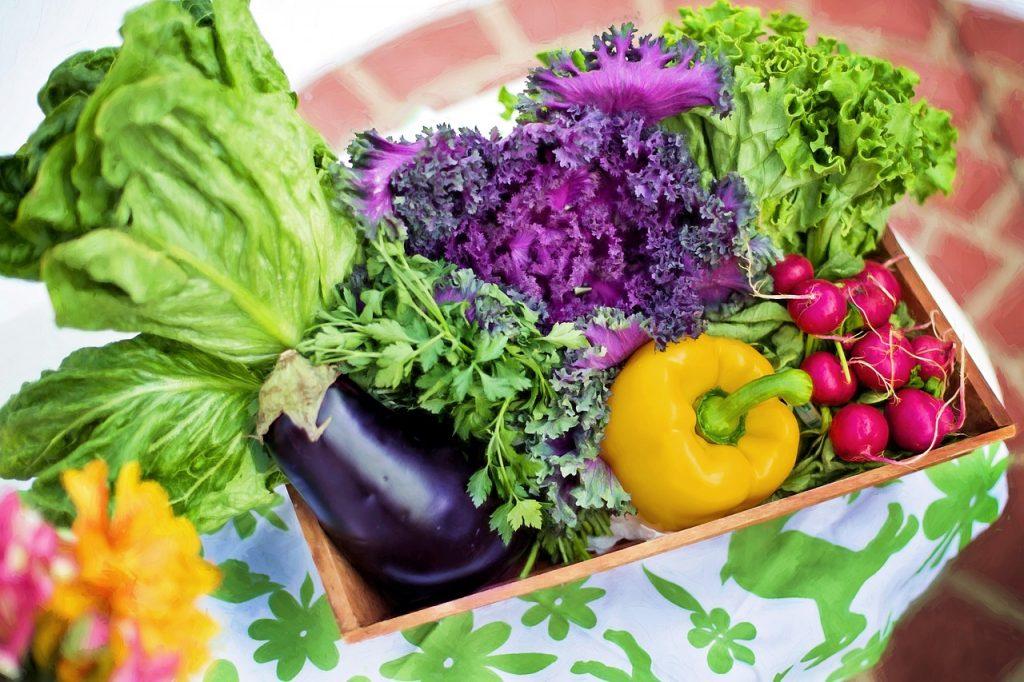 Alimenti e residui pesticidi: l'allarme di Legambiente